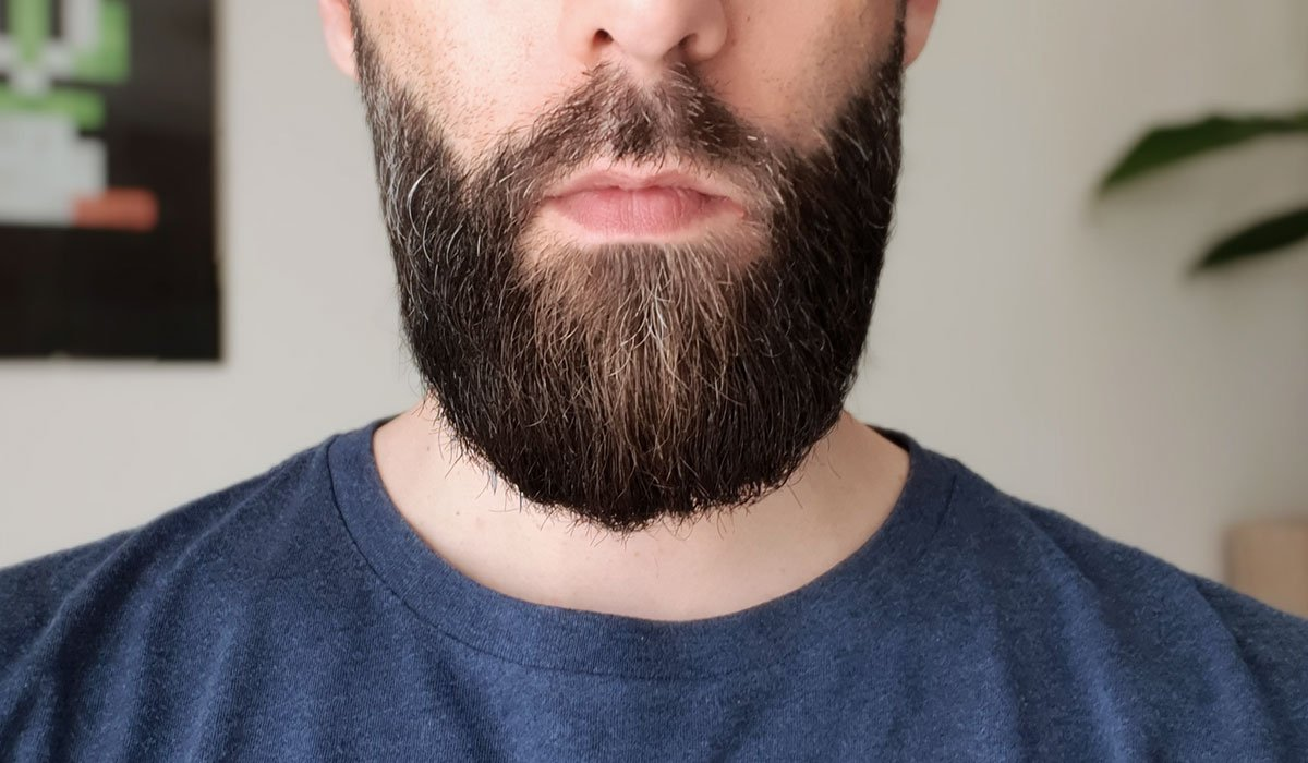 La barbe de bellebarbouze